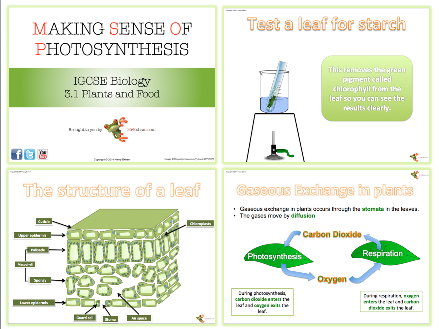 biology gcse coursework photosynthesis Gcse biology revision section covering plant nutrion, photosynthesis, green plants, reaction, carbon dioxide, water, glucose, oxygen, sunlight, chlorophyll and.