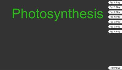 Screen Shot 2015-10-28 at 09.38.19